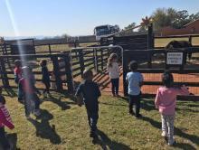 Grade R and RR TRIP TO MACS FARM