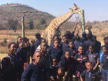 Lion Safari Park - Grade 6