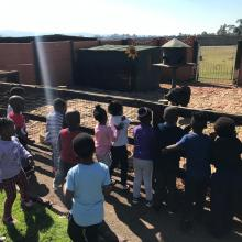 Grade R and RR TRIP TO MACS FARM
